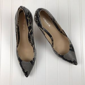COACH Python multi color gray pointed toe heels